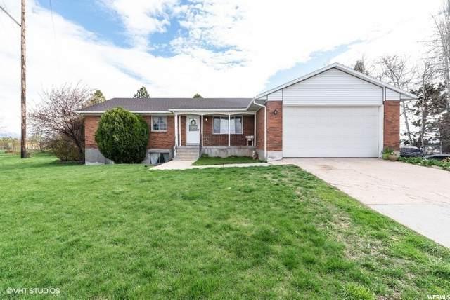2995 W Gordon Ave N, Layton, UT 84041 (#1718585) :: Utah Dream Properties