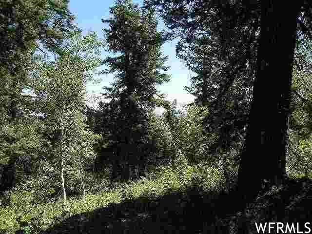 1717 Alexander Canyon Rd #18, Wanship, UT 84017 (#1724421) :: The Lance Group