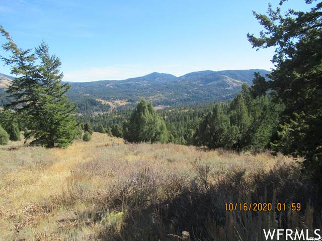 Address Not Published #371, Lava Hot Springs, ID 83246 (#1724645) :: Colemere Realty Associates