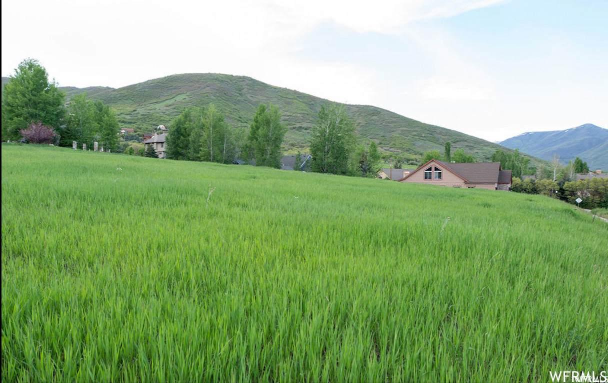 335 Alpenhof Cir - Photo 1