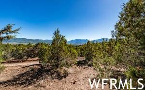 1481 N Red Castle Cir #650, Heber City, UT 84032 (MLS #1727933) :: High Country Properties
