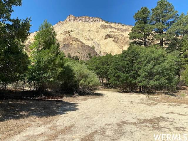 75000 N 1 #6, Marysvale, UT 84750 (#1728306) :: The Fields Team