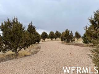 1369 S Stagecoach Rd #20, Fruitland, UT 84027 (#1732443) :: Colemere Realty Associates