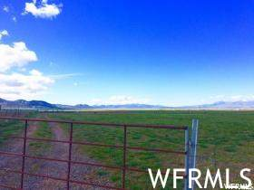 600 S 800 W, Levan, UT 84639 (MLS #1734271) :: Summit Sotheby's International Realty