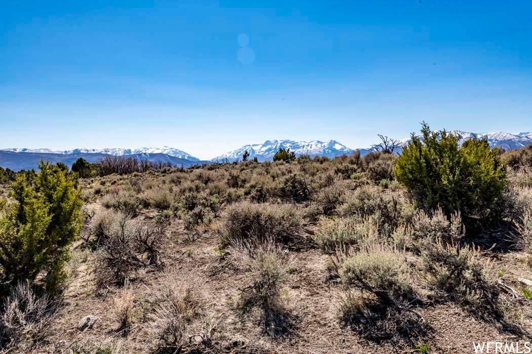 2784 Boulder Top Loop - Photo 1