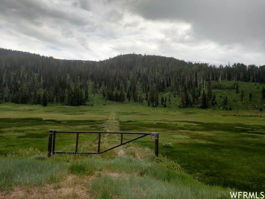 12 State Highway 264 - Photo 1