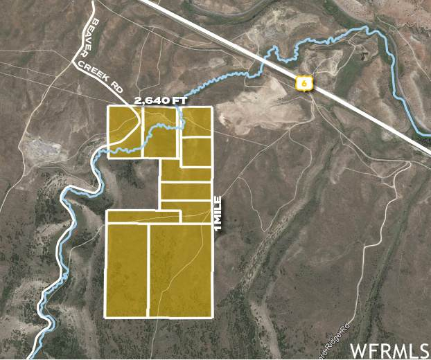 Beaver Creek Rd, Spanish Fork, UT 84660 (#1747906) :: UVO Group   Realty One Group Signature