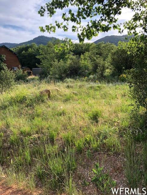 179 Cold Dr #330, Fish Haven, ID 83287 (MLS #1749920) :: Summit Sotheby's International Realty