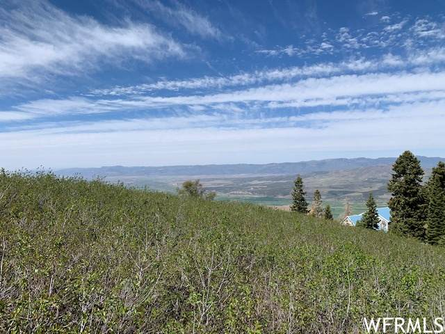 23185 N Ridge Rd E G-33, Fairview, UT 84629 (#1750369) :: UVO Group   Realty One Group Signature