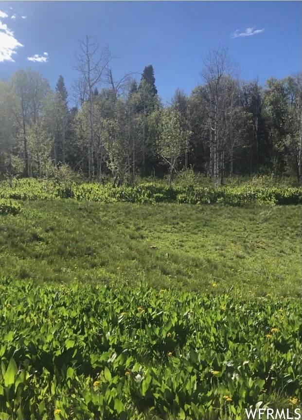 155 Porcupine Loop #176, Wanship, UT 84017 (MLS #1750974) :: High Country Properties