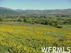 4034 E Nordic Valley Dr N, Eden, UT 84310 (#1753001) :: Utah Real Estate
