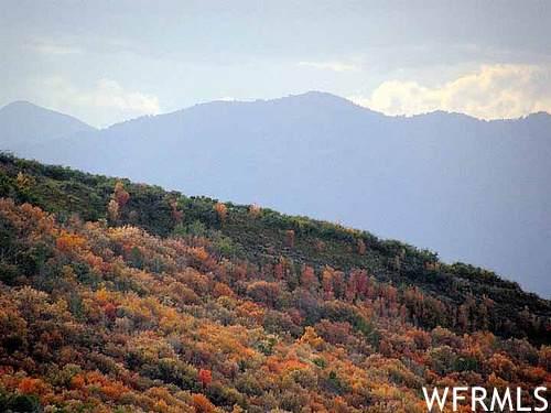 8478 E Lake Pines Dr #266, Heber City, UT 84032 (#1754201) :: Utah Real Estate