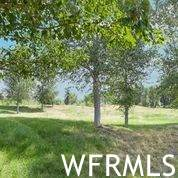 1188 S Old Trappers Rd, Huntsville, UT 84317 (#1757481) :: The Fields Team