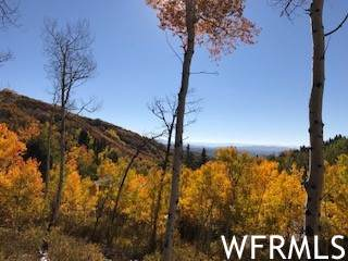 Address Not Published, Wanship, UT 84017 (MLS #1773824) :: Lookout Real Estate Group