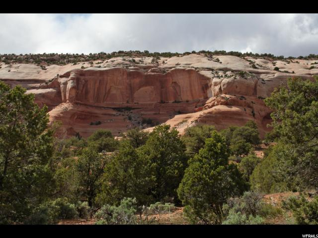 16 Joe Wilson Dr 16A, Moab, UT 84532 (#1316168) :: Big Key Real Estate