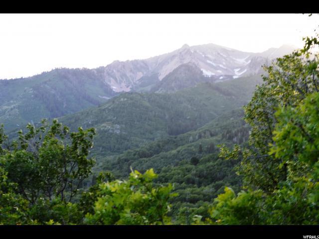 26 N E. Spring Mountain Dr E, Springville, UT 84663 (#1384344) :: Colemere Realty Associates