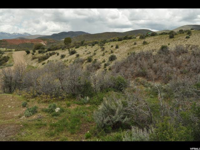 7329 E Valley View Dr, Heber City, UT 84032 (MLS #1436071) :: High Country Properties
