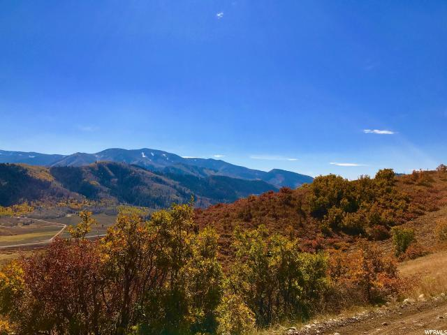 154 Mountain View Rd, Oakley, UT 84055 (MLS #1445412) :: High Country Properties