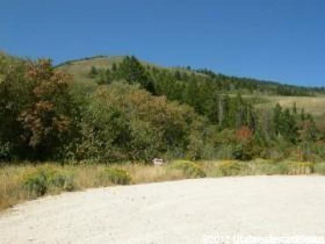 53 Blackfoot Cir, Fish Haven, ID 83287 (#1446446) :: Big Key Real Estate
