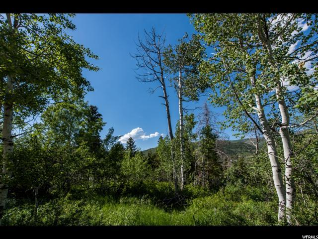 5813 E Uncompahgre Dr N, Oakley, UT 84055 (MLS #1459744) :: High Country Properties