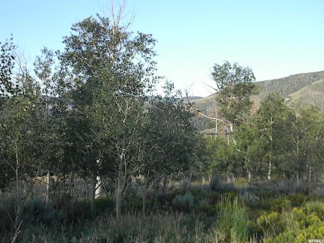 97 N Wildflower Creek E, Scofield, UT 84526 (#1466672) :: Exit Realty Success