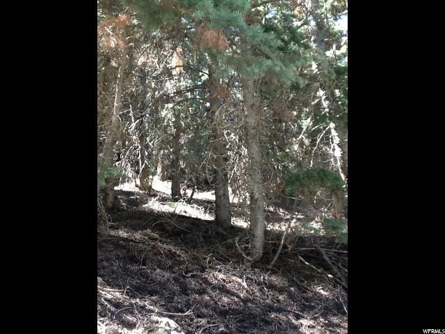 41 Acres, Mount Pleasant, UT 84647 (#1475732) :: Red Sign Team