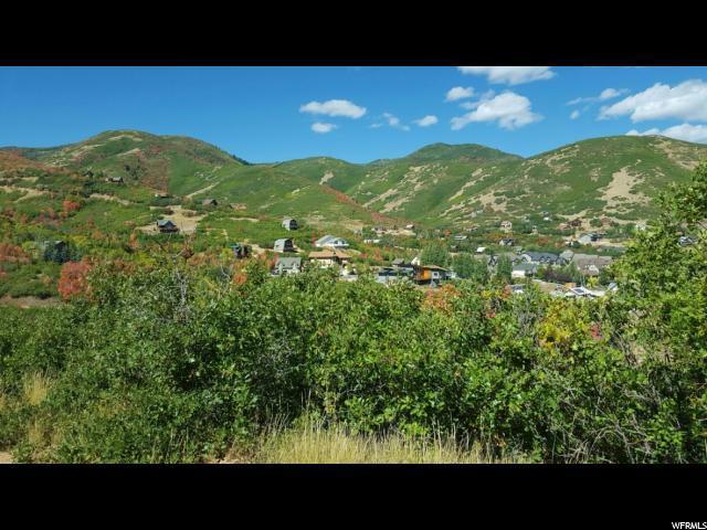 102 Alphorn Way, Midway, UT 84049 (MLS #1480807) :: High Country Properties