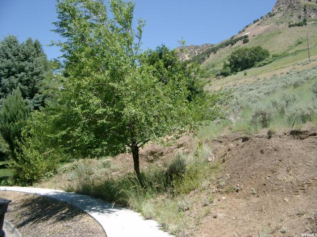 170 N Marie, Brigham City, UT 84302 (#1489140) :: Big Key Real Estate