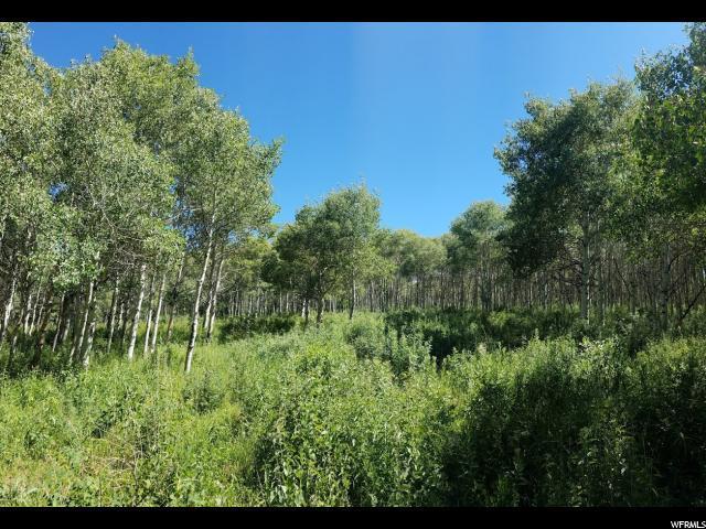 17661 E Beaver Mountain Cir S, Spanish Fork, UT 84660 (#1502481) :: Red Sign Team