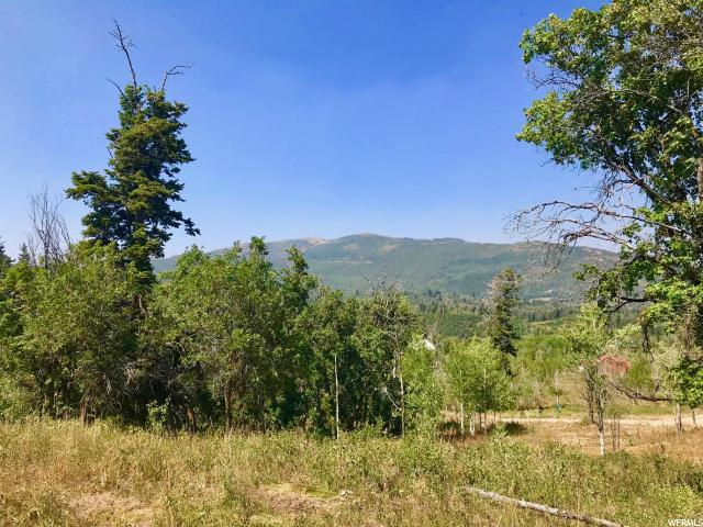 2292 Forest Meadow Road Rd, Wanship, UT 84017 (MLS #1515559) :: High Country Properties