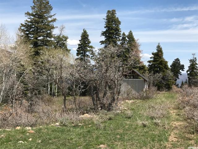 2231 S Porcupine Cir, Coalville, UT 84017 (MLS #1519760) :: High Country Properties