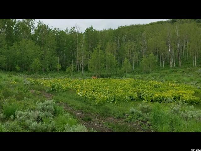 10230 E Lake Pines Dr Dr, Heber City, UT 84032 (#1523959) :: Big Key Real Estate