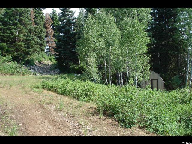 41 E Deer Valley Dr S, Fairview, UT 84629 (#1524782) :: Exit Realty Success