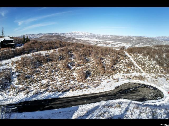 3799 Fox Tail Trl, Park City, UT 84060 (#1526384) :: Colemere Realty Associates
