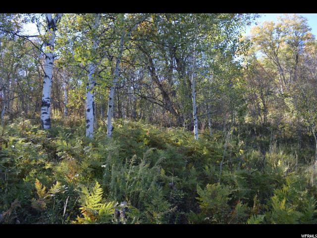 Springville, UT 84663 :: Colemere Realty Associates