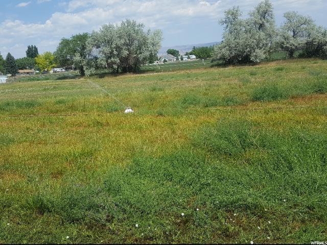 1347 S 500 E, Vernal, UT 84078 (#1539240) :: Bustos Real Estate | Keller Williams Utah Realtors