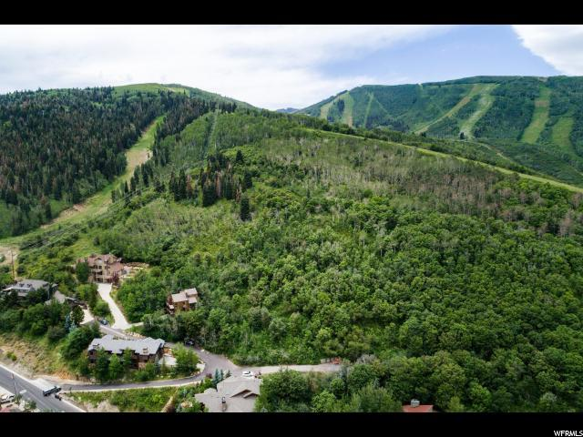 1013 Northstar Dr, Park City, UT 84060 (#1540555) :: Colemere Realty Associates