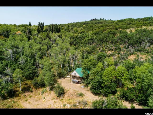 1407 Lower Cove Rd, Park City, UT 84098 (MLS #1545695) :: High Country Properties
