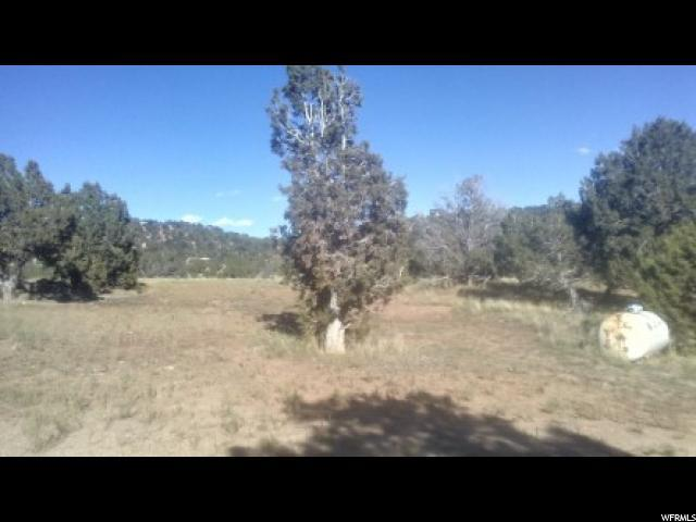 45760 W Airport Rd, Fruitland, UT 84027 (#1559434) :: Colemere Realty Associates