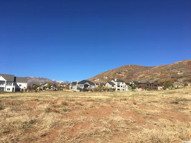 553 E Dutch Mtn Dr, Midway, UT 84049 (MLS #1560204) :: High Country Properties