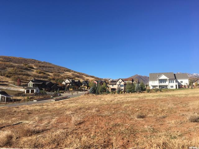 547 E Dutch Mtn Dr, Midway, UT 84049 (MLS #1560206) :: High Country Properties