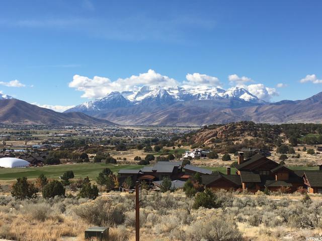 650 Ibapah Peak Dr (176) - Photo 1