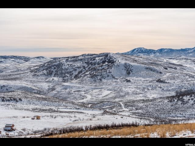 230 Oakview Dr, Wanship, UT 84017 (#1571319) :: Big Key Real Estate