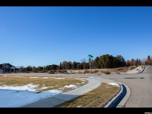 588 W Sycamore Ln S, Alpine, UT 84004 (#1571369) :: Action Team Realty