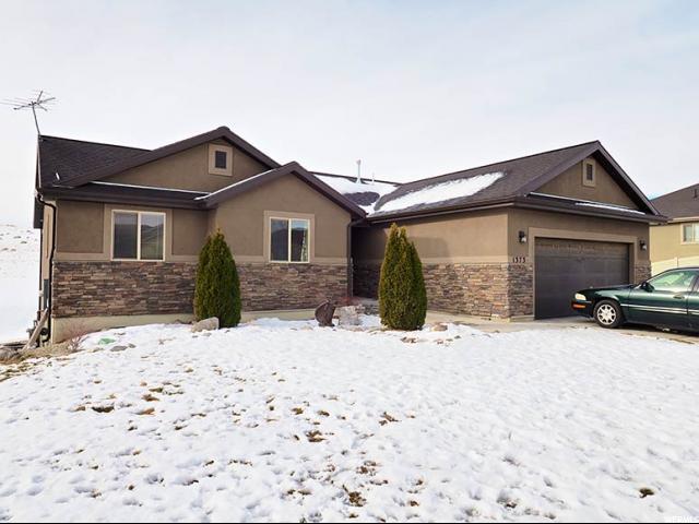 1373 W Cedar Pass Dr, Santaquin, UT 84655 (MLS #1575188) :: Lawson Real Estate Team - Engel & Völkers