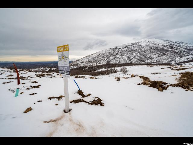14667 S Alpine Peak Dr E, Draper, UT 84020 (#1579907) :: Von Perry | iPro Realty Network