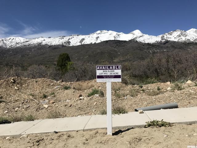 1443 E Box Elder Way, Alpine, UT 84004 (#1583279) :: Bustos Real Estate | Keller Williams Utah Realtors