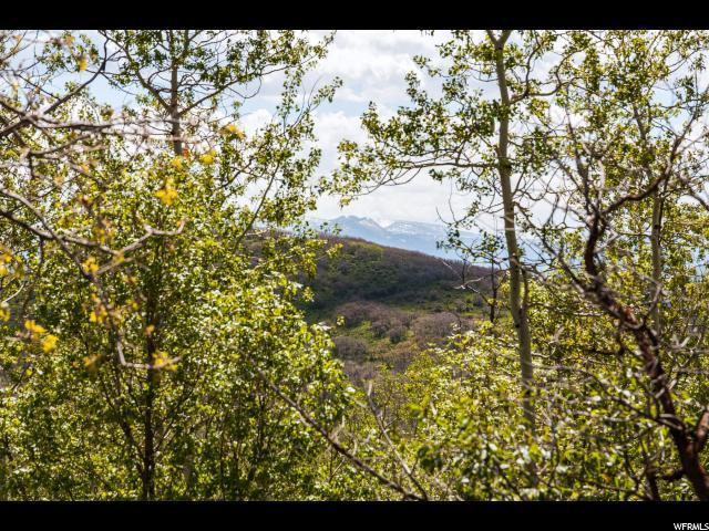 10023 N Basin Canyon Rd, Park City, UT 84098 (MLS #1588862) :: High Country Properties