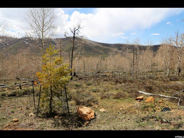 94 N Mountain Ridge Cir, Scofield, UT 84526 (#1594151) :: RE/MAX Equity