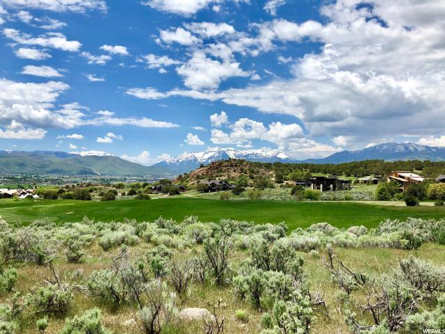 2900 Brown Duck Mountain Cir (106) - Photo 1